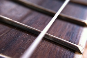 Free Photo Ukulele Frets