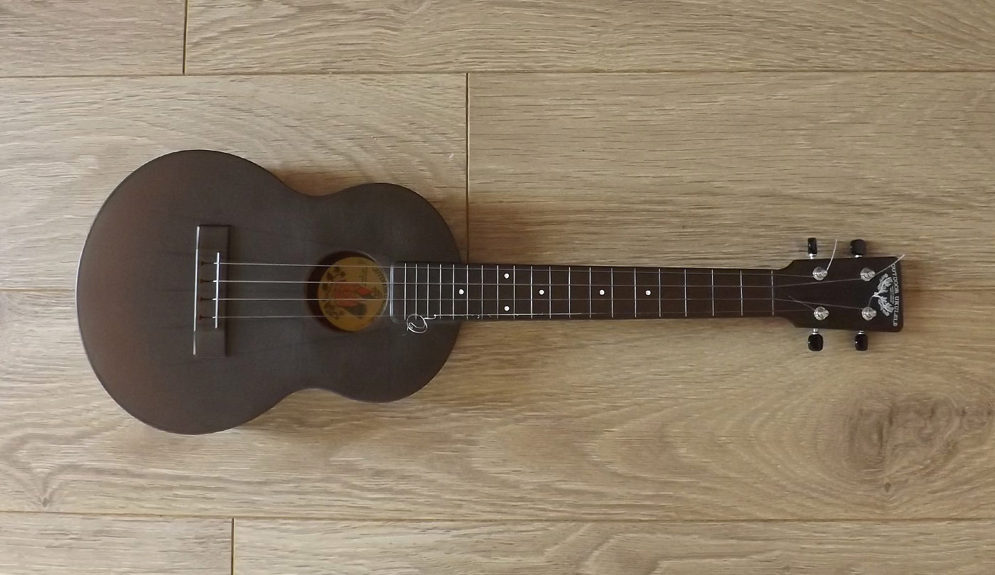 outdoor ukulele tenor top view